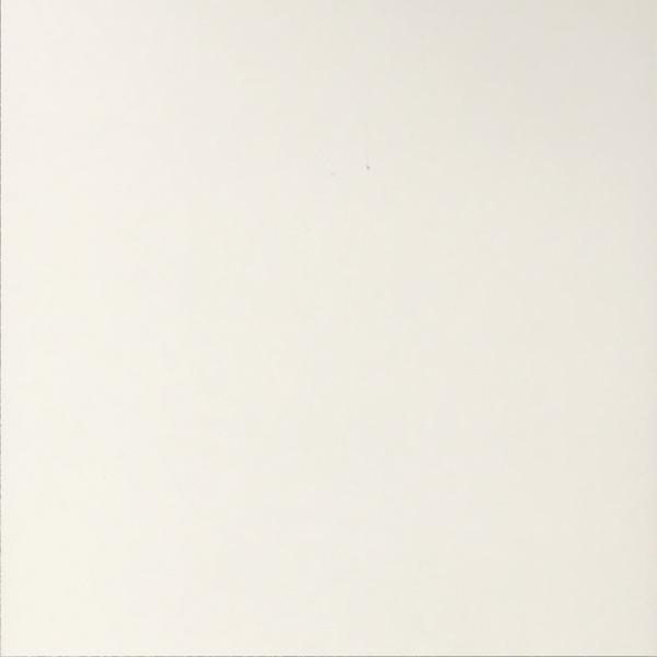 White (mat)